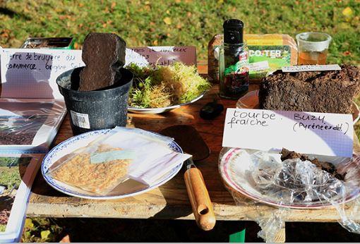 Pris la main dans le sac... de tourbe ! - Atelier éco-citoyen maison de l\'environnement de Franche-Comté