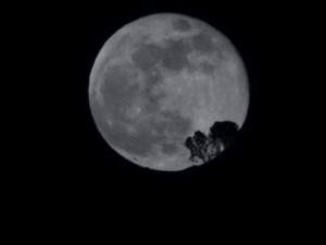 Les mystères de la nuit : «Balade nocturne à Chaudanne»
